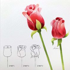 Easy Flower Drawings, Beautiful Flower Drawings, Flower Art Drawing, Flower Drawing Tutorials, Flower Sketches, Easy Rose Drawing, Roses Drawing Tutorial, Easy Flower Painting, Watercolor Paintings For Beginners