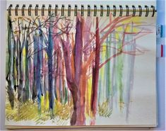 Trees - sketches colour Cindy M. Bell