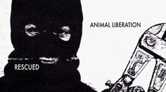 GOD BLESS!!!!!!!!! RESCUED: Animal Liberation (featuring Jonathan Paul) - A short documentary portrait of Jonathan Paul, former Animal Liberation Front member who was sentenced to 51 months in federal prison for his part in the 1997 Cavel West arson.