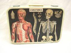 upcycled vintage suitcase french anatomy l'anatomie decoupage luggage auf Etsy, Verkauft