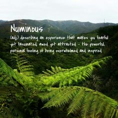 Numinous meaning #pikitiaography