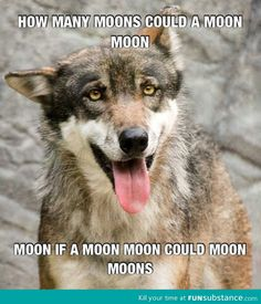 How many moons could a moon moon moon