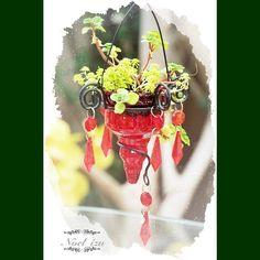 第14回 国際バラとガーデニングショウ✨ #gardening #flower #rose #japan - @noel_izu- #webstagram