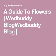 A Guide To Flowers | Wedbuddy BlogWedbuddy Blog |