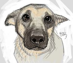 Puppy-eyes by EJ-Su on DeviantArt ★ Find more at . Puppy-eyes by EJ-Su on DeviantArt ★ Find more at . Cool Drawings, Drawing Sketches, Drawing Tips, Drawing Drawing, Bear Drawing, Cute Dog Drawing, Sketching, Drawings Of Dogs, Simple Animal Drawings