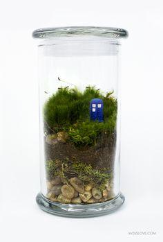 Doctor Who Inspired Terrarium — Moss Love
