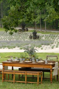 A view of the table location for an al fresco event.