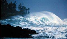Tofino BC, Canada; Vancouver Island Wickaninnish Inn-Winter Storm Watch