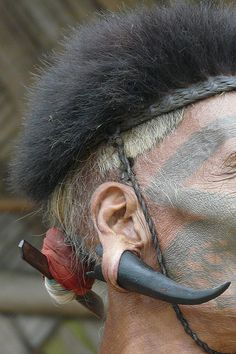 Ear and hair adornment details from a local tribesman |   Image credit Rita Willaert, photo taken in an Longwa  a Konyak village in Mon area situated on the Myanmar-India border, Nagaland, India.