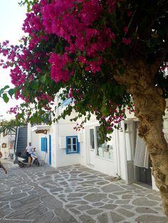 Traveling to Paros Beautiful Islands, Beautiful Beaches, Paros Island, Volcanic Rock, Famous Beaches, Tourist Spots, Small Island, White Houses, Greek Islands