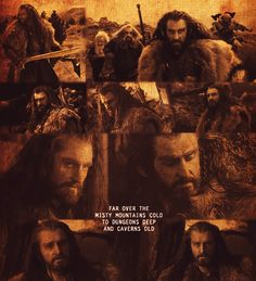 Thorin Oakenshield. *le sigh* Even though Elves are way better, I can still admit to the fact that Thorin is pretty cool. For a Dwarf, that is.