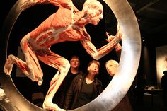 The human body exhibition Gunther Von Hagens, Installation Art, Human Body, Culture, World, Image, March, Google Search, Exhibitions