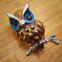 The eyes have it with this Owl Brooch  #craft365.com