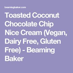 Toasted Coconut Chocolate Chip Nice Cream (Vegan, Dairy Free, Gluten Free) - Beaming Baker