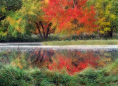 Fall Colours, Mersey River, Kejimkujik National Park, Nova Scotia -  ©Darwin Wiggett - oopoomoo.com