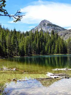 A cheval au bord des lacs translucides de l'Idaho, Etats-Unis #usa #voyage