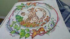Esquilo  Floresta encantada /jardim secreto