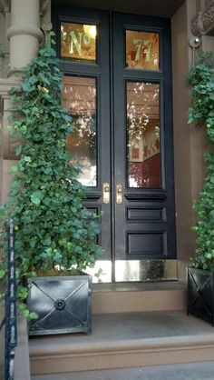 Beautiful entrance, planters and ivy trailing.