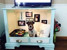 10 Cool DIY Dog Beds You Can Make For Your Baby - Cheezburger - Cat memes, funny animals, and cute dogs. #catsdiybed #dogbeds