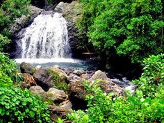 Photo from Kingston, Jamaica - WAYN.COM