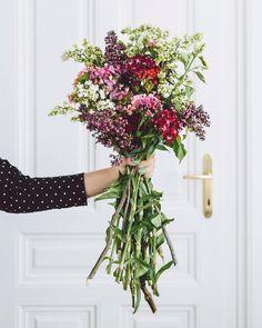 Hoy he ido a comprar un poquito de Primavera para traerla a mi casa  #flowers