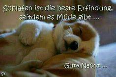 Gute Nacht - http://guten-abend-bilder.de/gute-nacht-107/