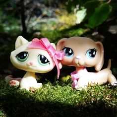littlest pet shop cat and dog