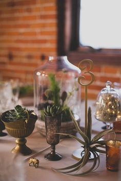Day of Gal Weddings Gold table number airplant wedding Eclectic & Rustic Carondelet House Wedding /  Michelle + Patrick - Utterly Engaged