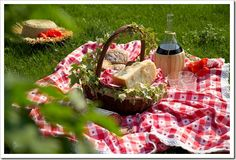 Pic-nic with homemade and garden food.