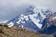 Patagonia-2896