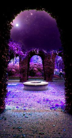 ☛All Things Purple☚ Purple Love, All Things Purple, Shades Of Purple, Deep Purple, Purple Colors, Purple Stuff, Purple Flowers, Beautiful World, Beautiful Places
