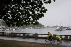 A man reaches to pull up the hood on a poncho as he and a child ride a tandem bike along the Stanley Park seawall during a rain storm in Vancouver, B.C., on Saturday August 29, 2015.