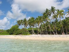 L'Anse Michel vue du large, Martinique. http://www.lonelyplanet.fr/article/les-plus-belles-plages-de-martinique #AnseMichel #Martinique #plage