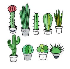 Cactus Clipart, Cactus Clip Art, Tribal Clipart, Tribal Clip Art, Succulent Clipart Clip Art - Commercial and Personal Use, Vector cactus by OneTongueSoup on Etsy