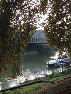 One of many beautiful bridges