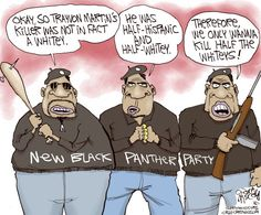 This cartoon is satire of the Black Panthers and also referencing the killing of Trayvon Martin, which has been publicized as a racist killing. This is a link where George Zimmerman's brother is being accused of posting racist tweets: http://www.dailydot.com/news/robert-zimmerman-apology-racist-tweets/