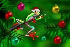 Christmas Frog II Wall Mural