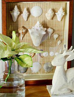 Beautifully Framed Seashells: http://beachblissliving.com/vacation-memories-photo-display-shell-decor-ideas/