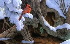 Preview wallpaper painting, snow, winter, tree, bird, cardinal