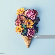 Contemporary photo of fresh flowers in ice cream cone still life