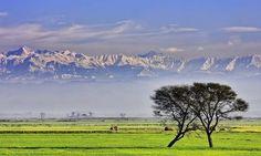 Views from Sialkot, Punjab, Pakistan Tourist Places, Tourist Spots, Places To Travel, Places To Go, Pakistan Tourism, Pakistan Travel, Smileys, Ursula, Image Twitter