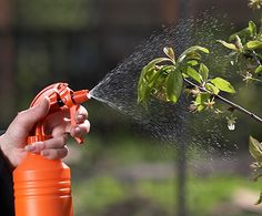 Pesticide Guide - The history and ABCs of pesticides!