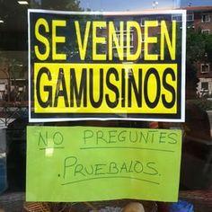 Gamusinos Photos on Instagram