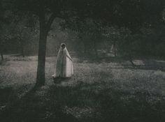 Constant Puyo~White Silhouette 1903