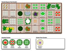 Squarefoot Garden Plan (with companion planting)