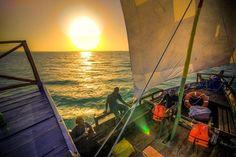 Friends, a shiny blogpost is here ✨ Zanzibar Holiday!!!!!! http://eco-africaclimbing.blogspot.com/2014/05/zanzibar-holiday.html?utm_campaign=crowdfire&utm_content=crowdfire&utm_medium=social&utm_source=pinterest