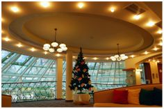 Christmas tree in our lobby to display the wishes of the children from the Stara Zagora Social home in #ParkInn #Sofia