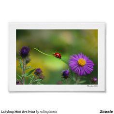 Ladybug Mini Art Print