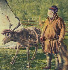 Swedish Sami man and his reindeer. Svensk samisk mann og hans reinsdyr.