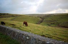 Ireland. #bucketlist